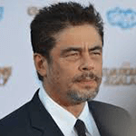 Picture of Benicio Del Toro,  Traffic